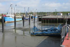 """Der """"Molch"""" kann bald seine Arbeit aufnehmen und die Liegeplätze für die Sportboote freispülen"""