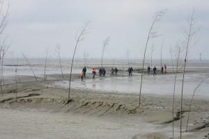 Fischer und Sportbootfahrer stecken die Pricken am Rand des Prils